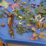autumn-sensory